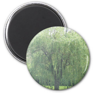 Weeping WIllow 6 Cm Round Magnet