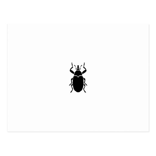 Weevil Post Cards