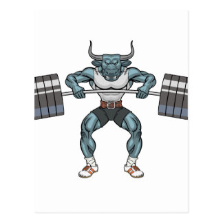 weight lifting bull postcard