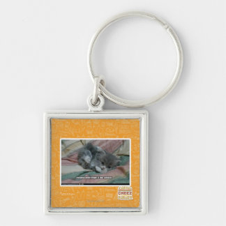 Weight of own cuteness Silver-Colored square key ring