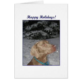 Weim Christmas Card