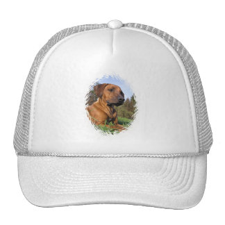 Weimaraner Baseball Cap Mesh Hats
