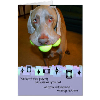 Weimaraner Birthday Greeting Card