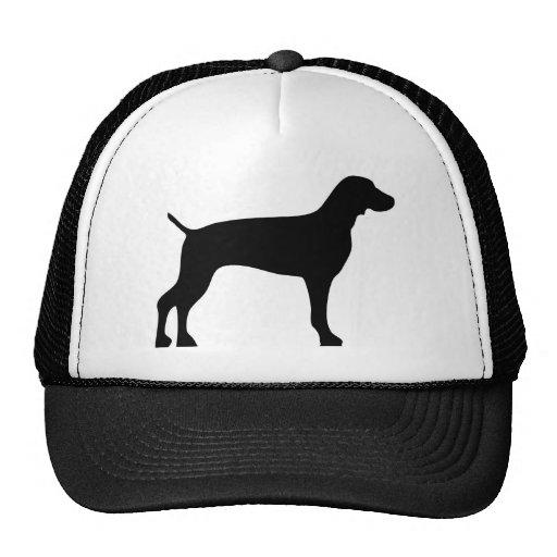 weimaraner-black hats