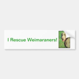Weimaraner Bumper Stickers