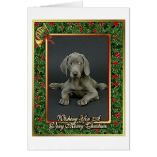 Weimaraner Dog Blank Christmas Card