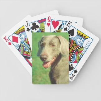 Weimaraner Dog Playing Cards