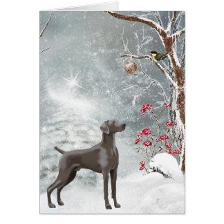 Weimaraner Holiday Card
