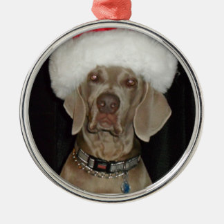Weimaraner Holiday Helper Christmas Ornament