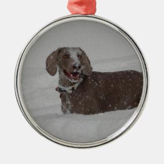 Weimaraner in deep snow christmas ornament