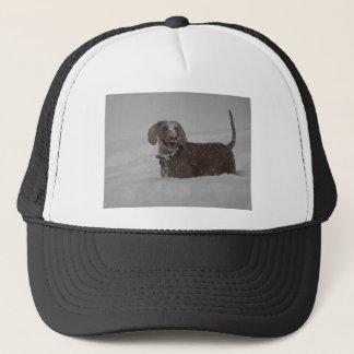 Weimaraner in deep snow trucker hat