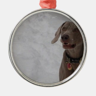 Weimaraner in the snow christmas ornament