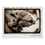 """Weimaraner Nation : """"The Foot Well Travelled"""" Print"""