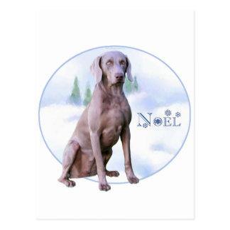 Weimaraner Noel Postcard