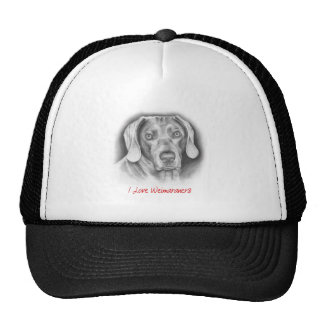Weimaraner pedigree dog cap