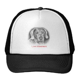 Weimaraner pedigree dog hats