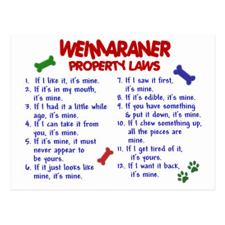 WEIMARANER Property Laws 2 Postcard