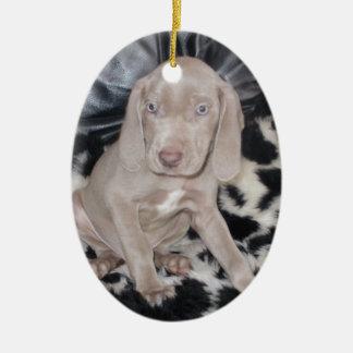 Weimaraner Puppy Christmas Ornament