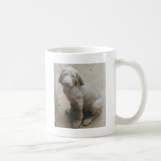 weimaraner puppy cute coffee mugs
