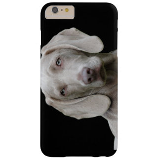 Weimaraner puppy eyes barely there iPhone 6 plus case