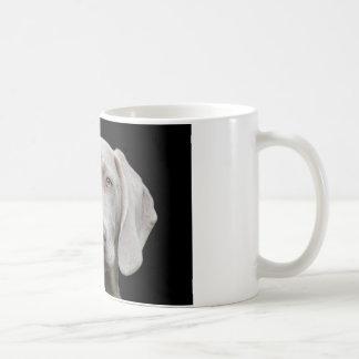 Weimaraner puppy eyes coffee mug