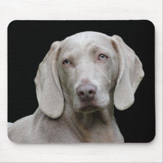 Weimaraner puppy eyes mouse mat