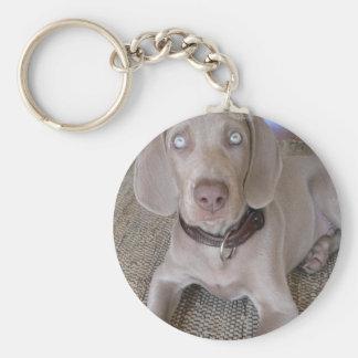 Weimaraner Puppy Keychain