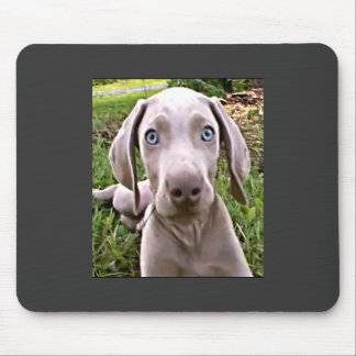 WEIMARANER PUPPY MOUSE PAD (MOUSEPAD)