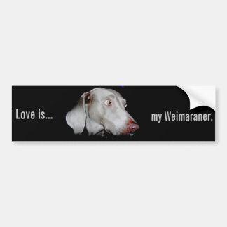 Weimaraner - The Gray Ghost Bumper Sticker