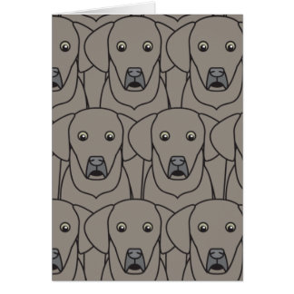 Weimaraners Greeting Cards