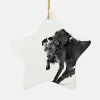 Weimaraner's in the snow christmas ornament