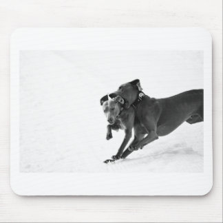 Weimaraner's in the snow mouse mat