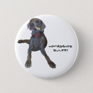 Weimaraners Rule! 6 Cm Round Badge
