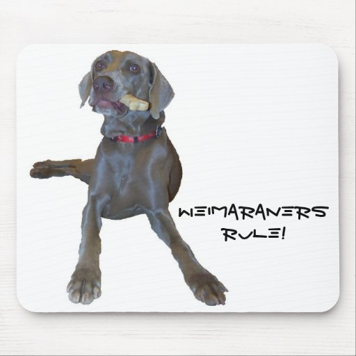 Weimaraners Rule!  mouse pad
