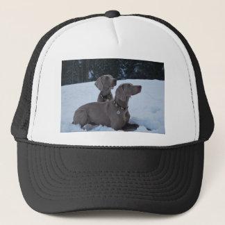 Weimeraner in the Snow Trucker Hat