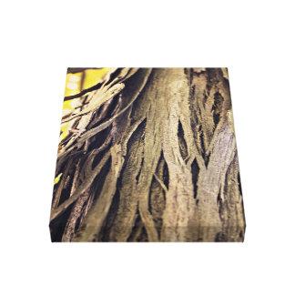 weird peeling old tree trunk canvas print