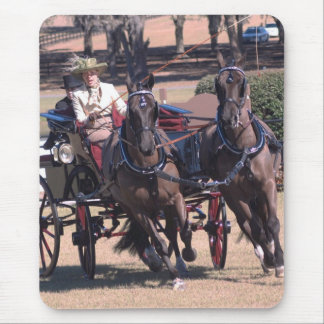 weirsdale fl carriage show in mouse pad