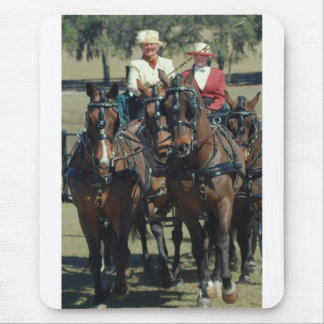 weirsdale fl carriage show mouse pad