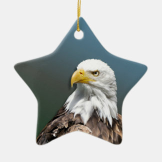 Weis head sea-eagle ceramic star decoration