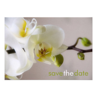 Weiße Orchidee • Save the Date Karte Custom Invitations