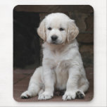 Weisser Golden Retriever Welpe Puppy Mauspad