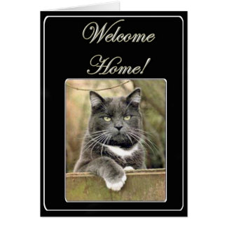 Welcome home cat greeting card
