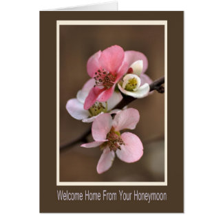 Welcome Home From Your Honeymoon Greeting Cards