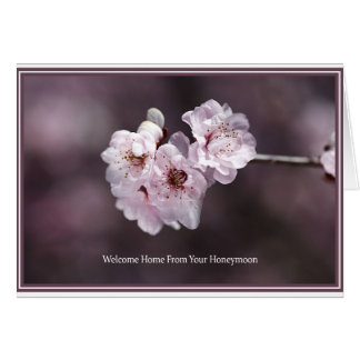 Welcome Home From Your Honeymoon - Spring Blossom Cards