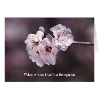 Welcome Home From Your Honeymoon - Spring Flowers Greeting Cards