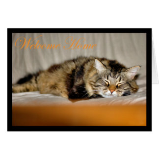 Welcome home Glad you are home again cat kitty Greeting Cards