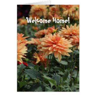 Welcome home Orange Dahlia blossoms Card