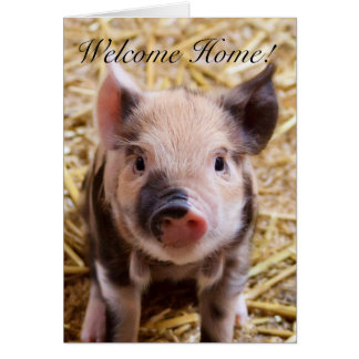 Welcome Home Piglet greeting card