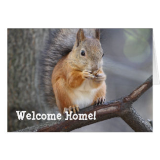 Welcome Home Red Squirrel Greeting Card