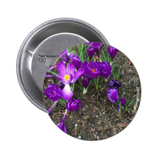 Welcome Spring 6 Cm Round Badge